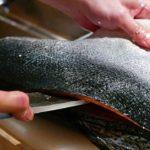 Japanese Food – FISH CUTTING SKILLS Salmon, Mackerel, Squid Sushi Kyoto Seafood Japan